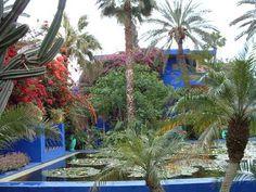 Google Image Result for http://photos.igougo.com/images/p115623-Marrakesh-Jardin_Majorelle.jpg
