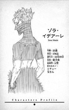 Black Clover Wiki, Black Clover Manga, List Of Characters, Anime Characters, Manga Art, Manga Anime, Robot Concept Art, Character Profile, Handsome Anime Guys