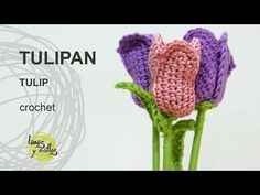 Tutorial Tulipan Crochet o Ganchillo