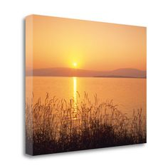 Tangletown Fine Art 'Peach Sunset' by Dennis Frates Photographic Print on Wrapped Canvas