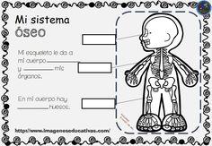 cuadernillo-Como-funciona-mi-cuerpo-6.jpg 1.040×720 pixels