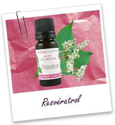 Actif cosmétique Resvératrol Aroma-Zone