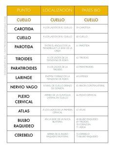 PUNTO LOCALIZACION PARES BIO CUELLO CUELLO CUELLO CAROTIDA A LOS LADOS DE EL CUELLO 59-CAROTIDA CUELLO A LOS LADOS DE EL C...