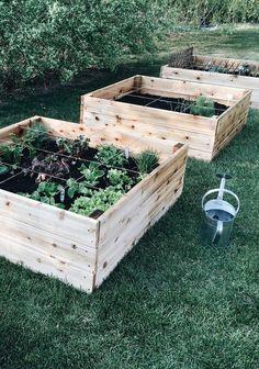 On le sait tous, jardiner n'est plus une activité de subsistance comme autrefois, mais davantage un moment de repos, de partage, de découvertes en famille, etc. Quand vient le temps de choisir le concept et surtout la grandeur de notre potager, il faut absolument s'arrêter pour définir nos besoins ainsi que le temps qu'on pourra allouer à l'entretien de notre jardin.