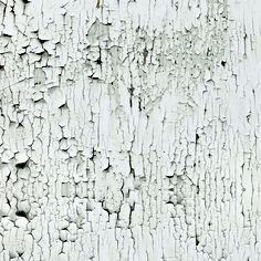 chalk paint strips- DV SS12