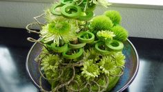 een tafelstuk Vegetables, Plants, Vegetable Recipes, Flora, Plant, Planting