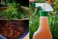Spray Bottle, Cleaning Supplies, Health Fitness, Tips, Ideas, Vinegar, Cleaning Agent, Thoughts, Fitness