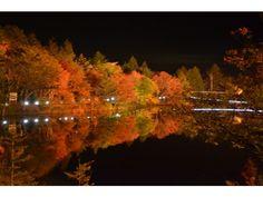 愛知県の紅葉おすすめスポット!家族で日本の秋を感じよう! Aichi ken no kōyō osusume supotto! Kazoku de Nihon no aki o kanjiyou! Spot daun merah yang direkomendasikan di Prefektur Aichi! Rasakan musim gugur Jepang dengan keluarga! https://feature.cozre.jp/69622