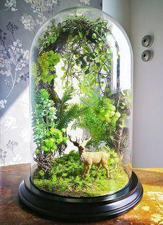 Artificial plants forest terrarium Cabinet of curiosities