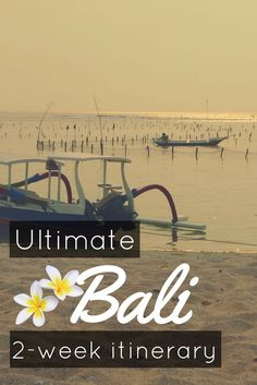 The Ultimate Bali Itinerary for 2 weeks - 2 week road trip itinerary in Bali - Follow the guide: here is the most scenic and efficient itinerary I can recommend based on my 2 trips there to know what to do, what to see and where to dive in Bali, Indonesia - Scuba diving - World Adventure Divers - #bali #balilife #balidaily #indonesia #roadtrip #roadtrippin #itinerary #scubadiving #scuba #diving #divers #divingbali
