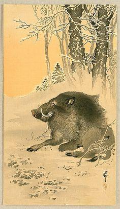 Ohara Koson Japanese Woodblock Print of Wild Boar Japanese Artwork, Japanese Painting, Japanese Prints, Japan Tattoo, Year Of The Boar, Japanese Animals, Ohara Koson, Art Japonais, Wild Boar
