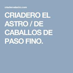 CRIADERO EL ASTRO / DE CABALLOS DE PASO FINO.