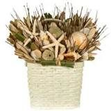 Image detail for -Beach Bungalow Seashell Floral Arrangement In Basket
