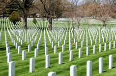 arlington national cemetery - Yahoo Search Results