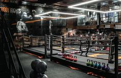 70 Best fight gym images in 2019   Fight gym, Gym, Boxing gym