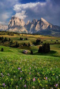 Dolomiti - sullo sfondo il Sasso Piatto