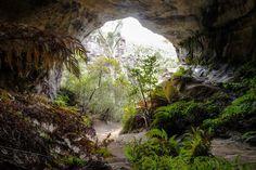 Cox's Cave  (photo courtesy of Auswalk client Chris Jose)