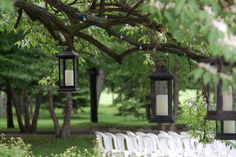 Lanterns hanging from trees at Earhart Manor patio