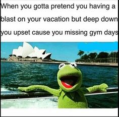 Kermit the Frog's Kickass Vacation in 15 Epic Photos Fitness Memes, Funny Fitness, Fitness Shirts, Fitness Gear, Fitness Life, Workout Memes, Gym Workouts, Sapo Kermit, Sapo Meme