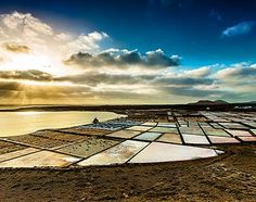 Get the best photographs of Lanzarote, with your own camera and guided by professional photographers. This is one of the best ways to discover the island. Tenerife, Photography Tours, Canario, Professional Photographer, Photographers, Island, Outdoor Decor, Canary Islands, Palms