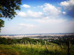 #wien #vienna #amhimmel #wein Vienna, Mountains, Nature, Travel, Wine, Naturaleza, Viajes, Destinations, Traveling
