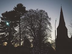 I will miss seeing this little Christmas tree in the centre of our village. I can't believe that there is just one day left of 2016. How did that come to be?