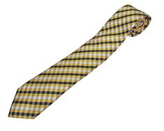 Amazon.com  ESPN College Gameday Men s Gingham Check Necktie Yellow Gold   Clothing f62cafbcd