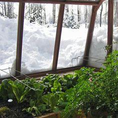 Greenhouse in the snow... Sturdi-Built Greenhouse