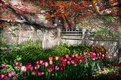 Spring Garden Fine Art