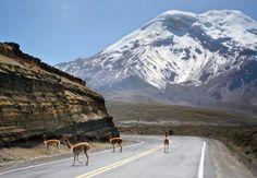 El Chimborazo visto desde la carretera Guaranda - Riobamba