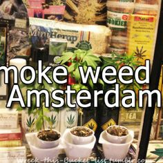 Amsterdam On Pinterest Red Light District Amsterdam