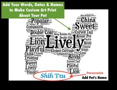 Traits of the Shih Tzu Even though the Shih Tzu is most often associated with China, it probably came from Tibet in the 17th century. In Tibet, it enjoyed...