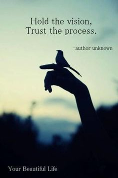 hold the vision. trust the process