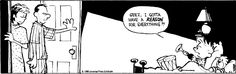 calvin and hobbes - a reason for everything?