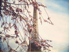 Paris (Tour Eiffel)