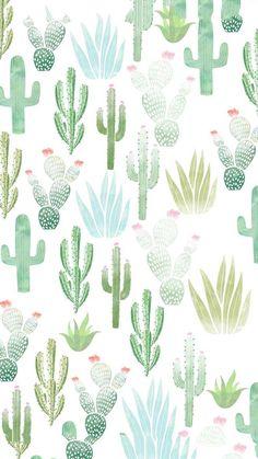 Cactus Wallpaper - iXpap