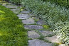 Edging the front lawn beside the street is a fieldstone path with carex, boxwood, and American beech forming a privacy hedge to hide the road.