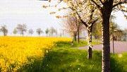 H M Landscape by Victoria Mishina
