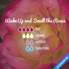 Wake Up and Smell the Roses — Essential Oil Diffuser Blend The Effective Pictures We Offer You About Essential Oils Guide, Essential Oil Scents, Rose Essential Oil, Essential Oil Perfume, Essential Oil Diffuser Blends, Doterra Essential Oils, Essential Oil Combinations, Diffuser Recipes, Perfume Recipes