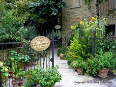 La Bottega  Volpaia  Chianti,  un bon restaurant, una pasta deliciosa....