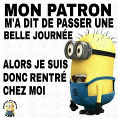 Minion Humour, Minion Jokes, Minions Quotes, Funny Minion, Funny Images, Funny Photos, Funy Quotes, Foreign Words, French Expressions