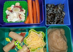 Kid Bento Lunch -freeze dried fruit -carrot sticks -wild rice -bologna and pepperoni rolls -shredded cheese -applesauce
