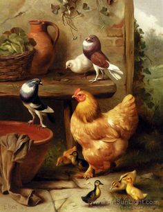 Chicken Oil Paintings | Chicken, Doves, Pigeons And Ducklings 1907 oil painting, Edgar Hunt ...
