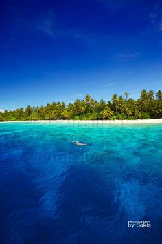 Maldives, Snorkeling in ..........Paradise