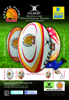 Exeter Chiefs Exeter Chiefs, Crests, Kingfisher, A Decade, Rugby, Balls, Advertising, Club, Shirts
