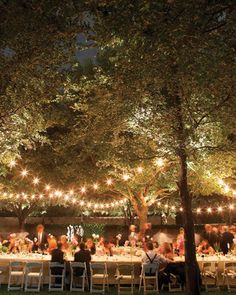 I love twinkly lights in trees -reception dinner