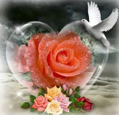 Here is a heart for a good Wednesday (pinned by Natalie) Beautiful Love, Beautiful Flowers, Beautiful Pictures, Beautiful Hearts, Gifs, Love Heart, Traveling By Yourself, Glass Art, Valentines Day
