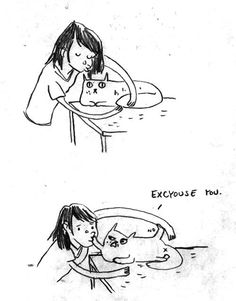 Cats don't <3 pets