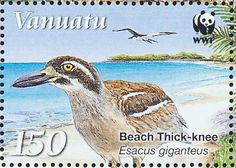 Beach Stone-curlew stamps - mainly images - gallery format