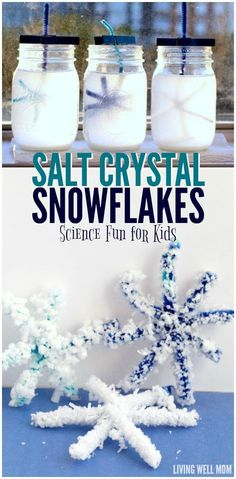 Salt Crystal Snowflakes - this simple STEM activity transforms pipe cleaners into beautiful crystal snowflakes. Kids will love this easy science project! # winter activities for kids Salt Crystal Snowflakes: Winter STEM Science for Kids Winter Activities For Kids, Winter Crafts For Kids, Winter Fun, Christmas Activities, Fun Activities, Winter Camping, Science Activities For Preschoolers, Activies For Kids, Preschool Winter